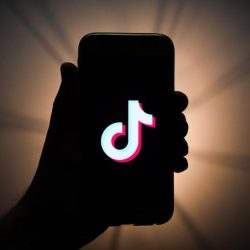 Download TikTok Videos